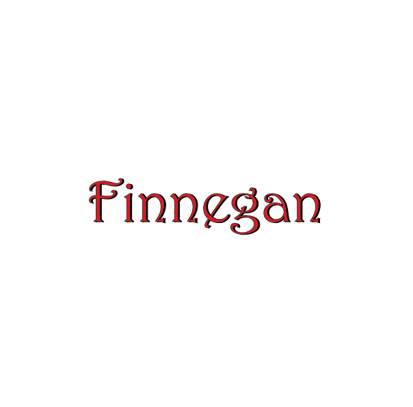 Screenshot of Finnegan.