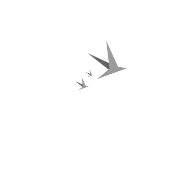 United Label / CI Games