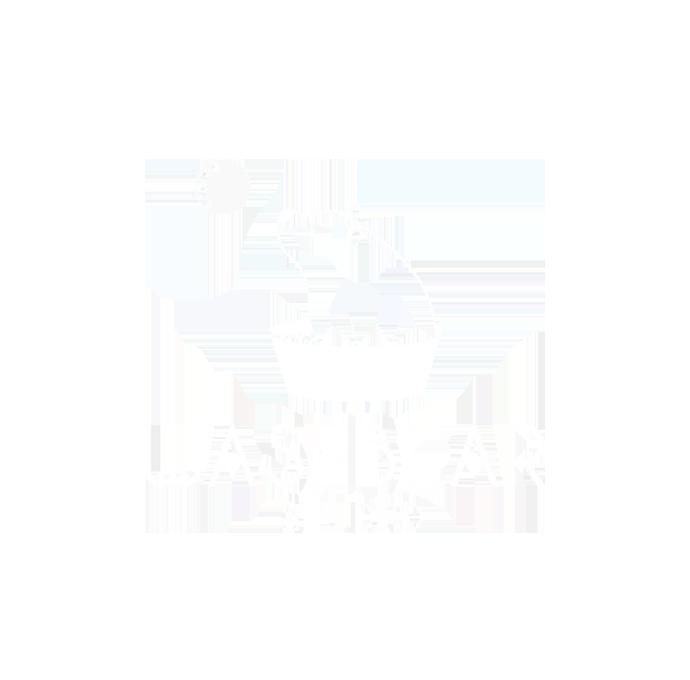 Washbear Studio